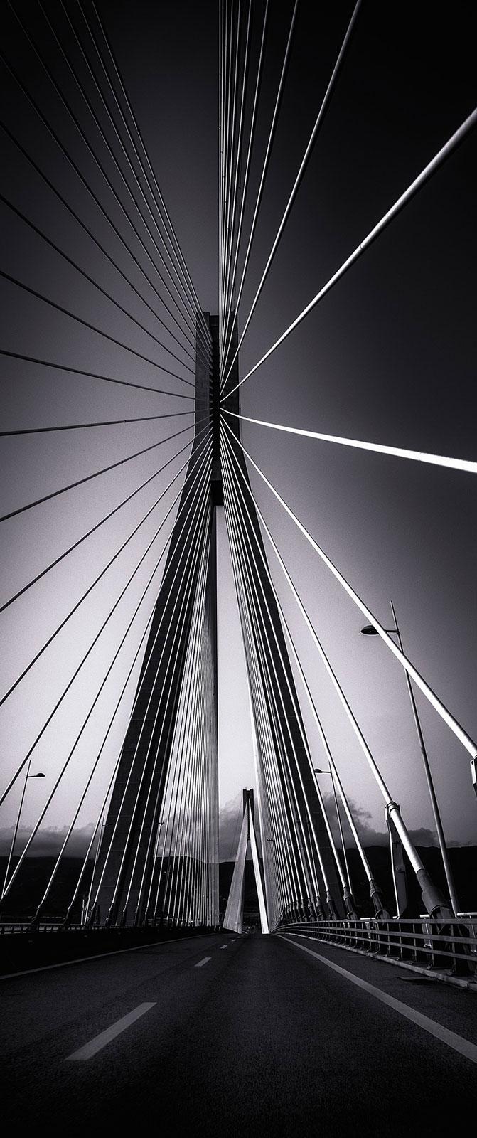 ponte - Servizi evolveeng